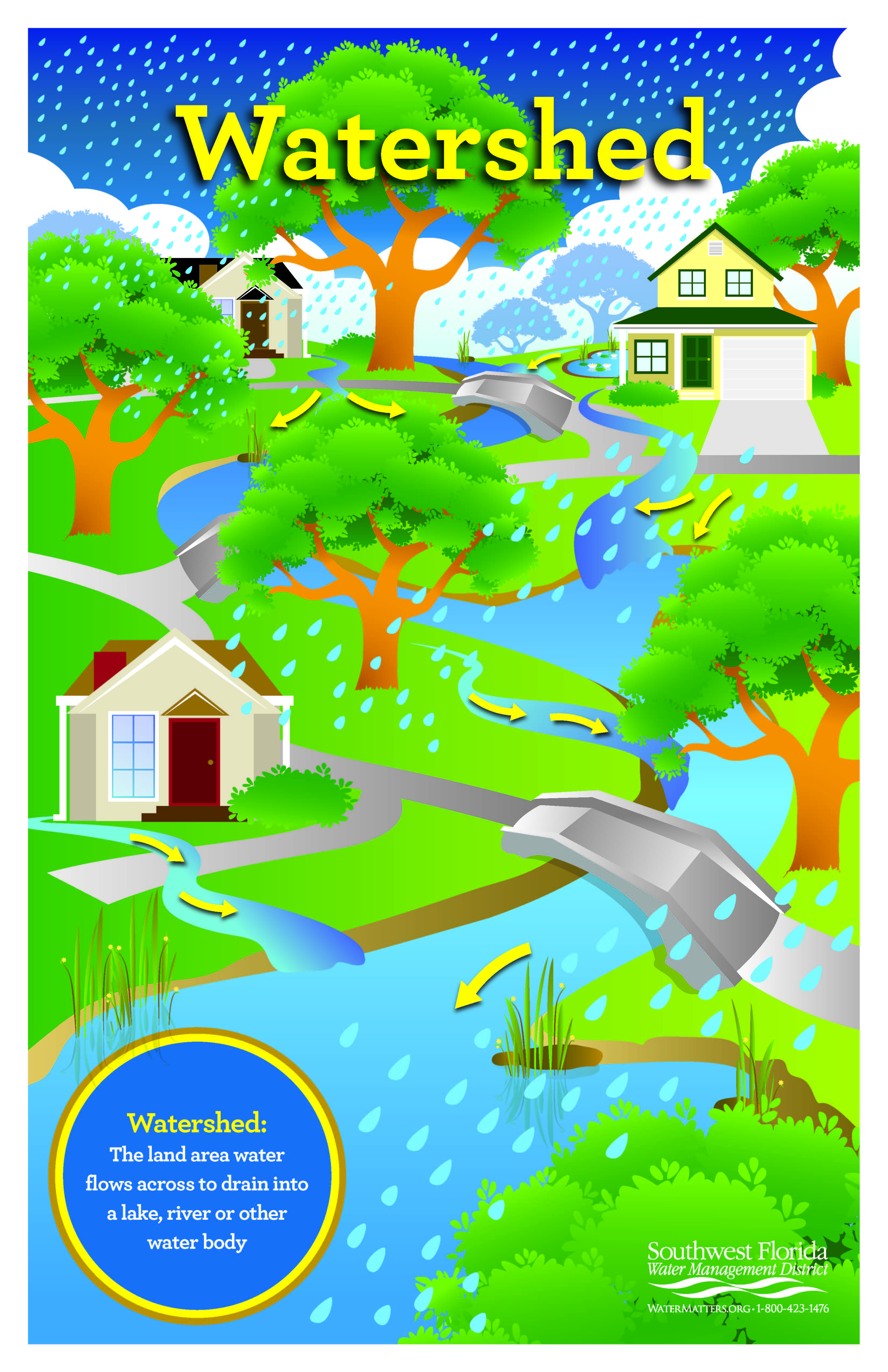 Order Or Download A Watershed Poster