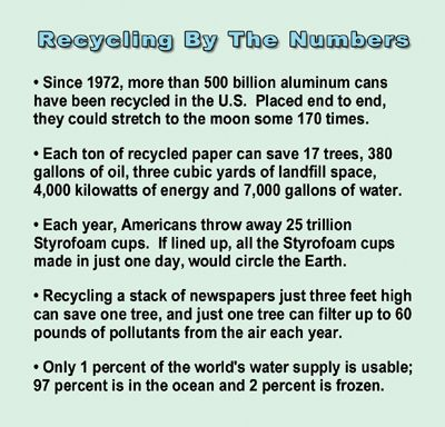 paper recycling facts