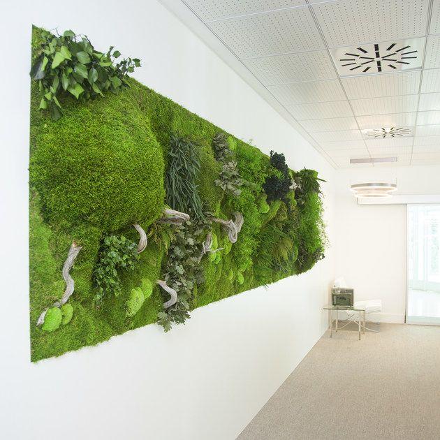 Stabilized plants indoor vertical garden MOSS&PLANTS MID ...