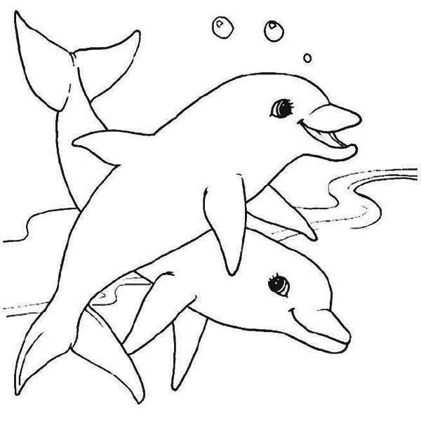 Images Dolphin Coloring Pages Dolphin Two Dolphin Swim Together Coloring Page Jpg Dolphin Coloring Pages Animal Coloring Pages Cute Coloring Pages