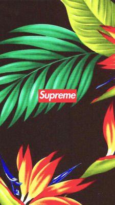 Designer Supreme Wallpaper Valoblogi Com