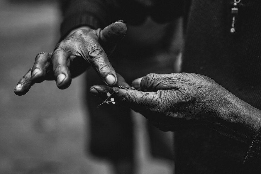 #nature #natur Paraso Guaran Amapy. Ser uno con la Naturaleza La verdadera riqueza est en la mente y el corazn El fin de semana pasado acompaamos con nosoyeesteban a el gran Guillermo Sequera (Mito) quien hace ms de 30 aos viene trabajando en la zona de Capiibary con el fin de crear un mundo mejor a travs de la educacin, el amor y el cuidado hacia la naturaleza con familias, comunidades indgenas y campesinas guarani. La Reforestacin, un punto clave en esta localidad. La familia Gonzlez nos recib