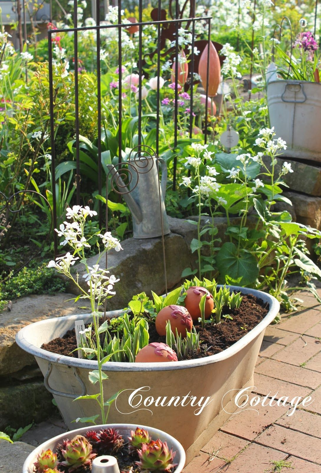 Cute idea for bulbs- the bath tub! From My Country Cottage Garden ...