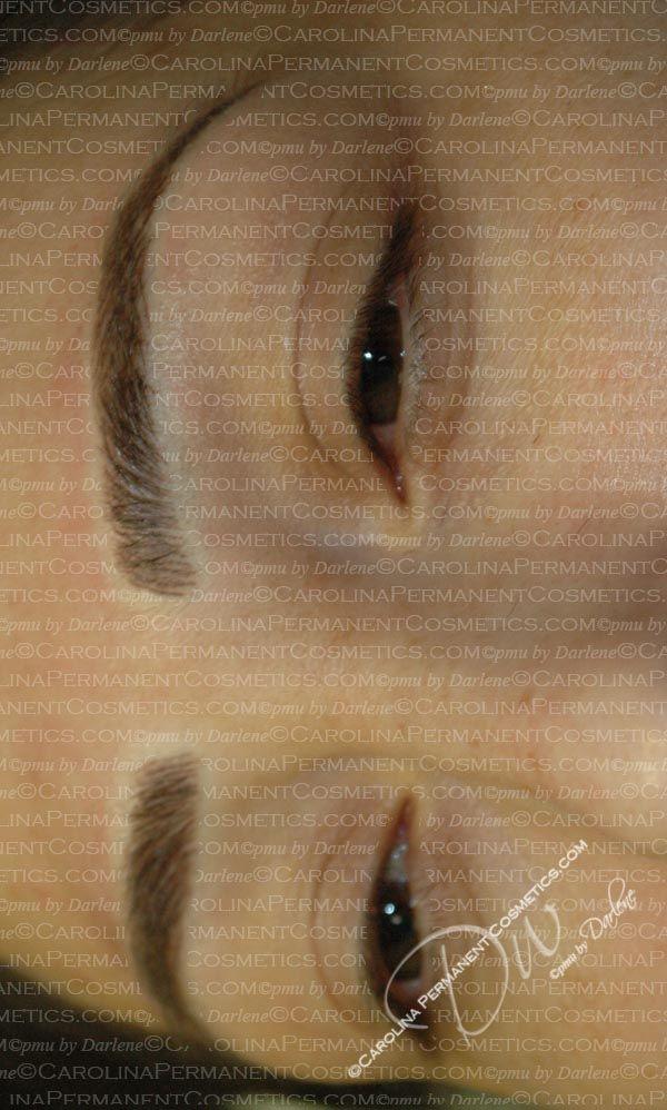 704 796 8221 Permanent Eyebrows Tattoo Concord Nc Rock Hill Nc