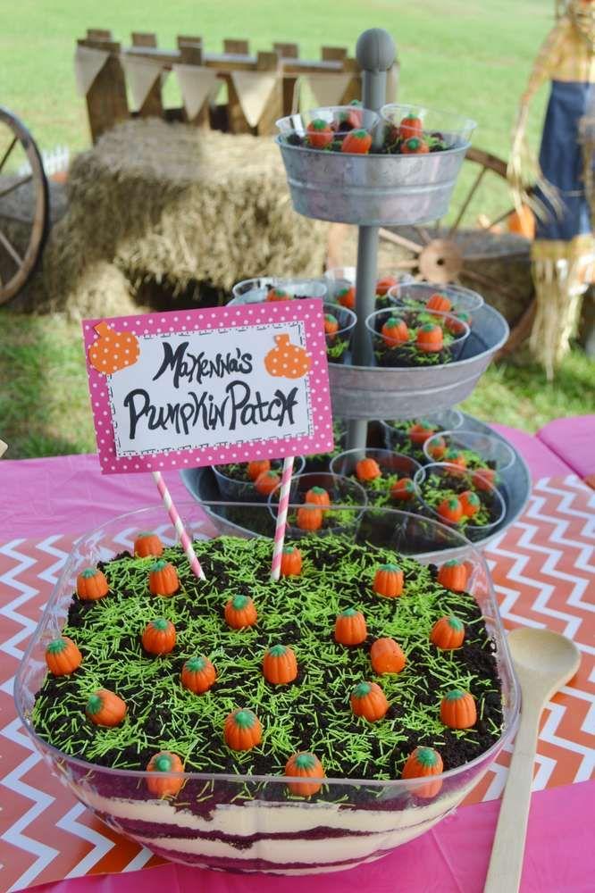 Makenna's Pumpkin Patch 1st Birthday Party