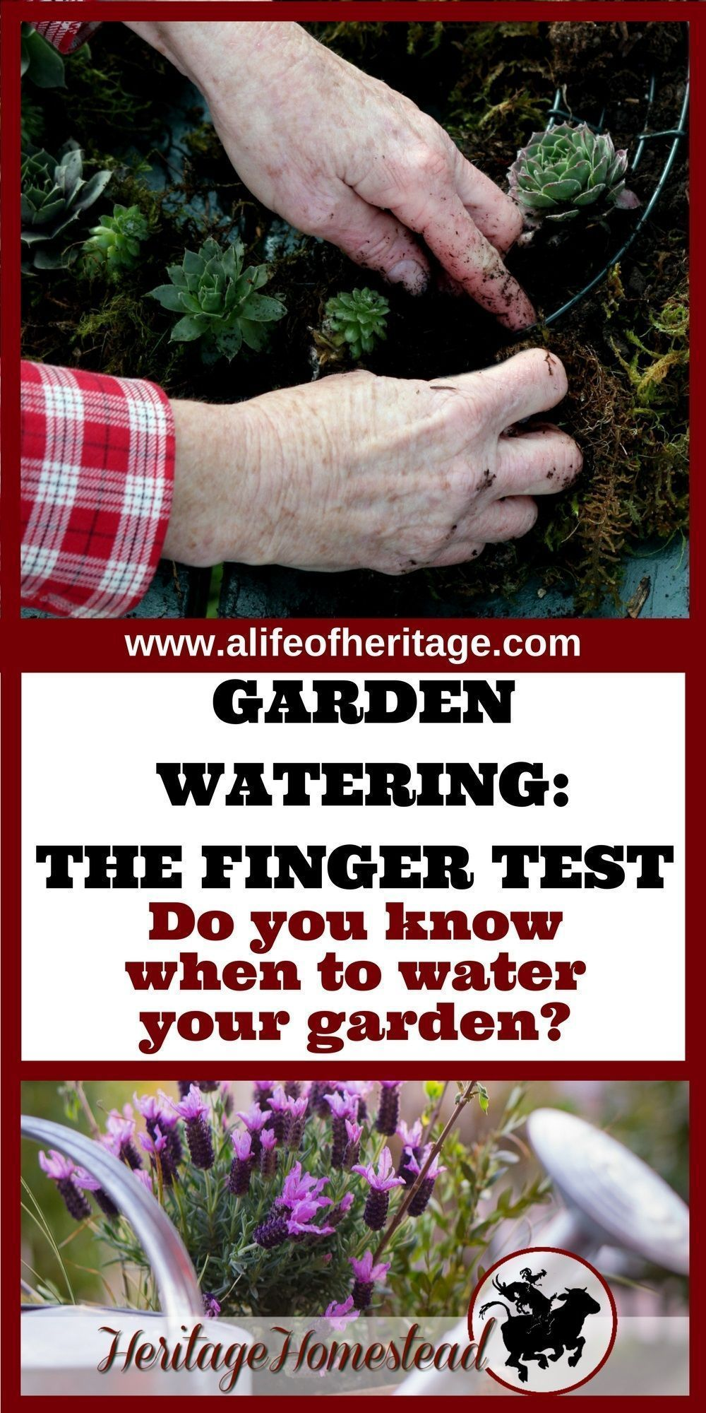 Garden watering is the most important aspect of your productive year