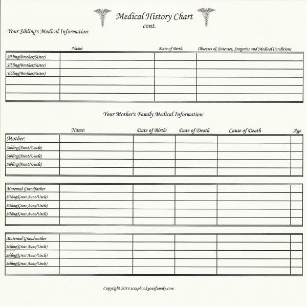 Our Roots - Medical History Chart B - 8\