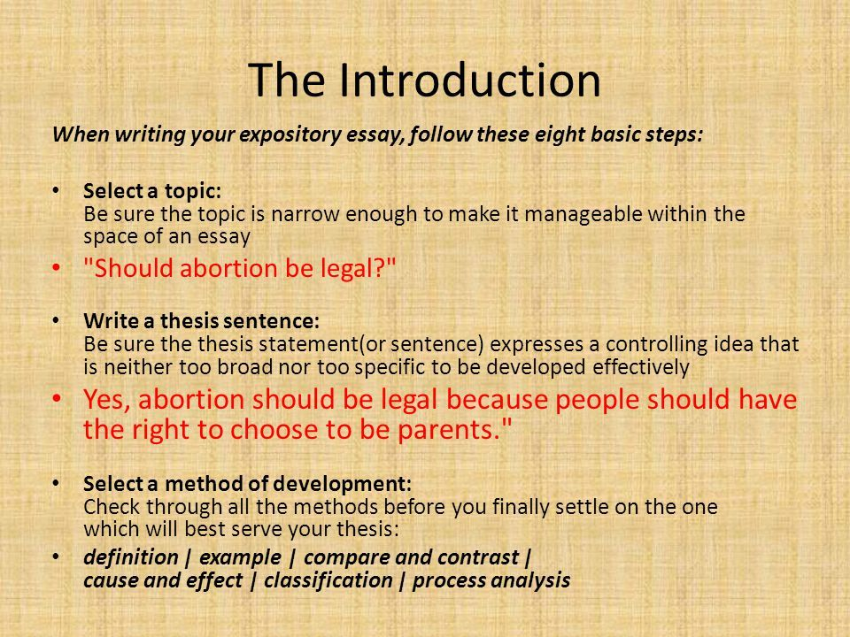 Hook For Expository Writing Google Search Essay About Abortion Should Be Legal Argumentative On Legalised