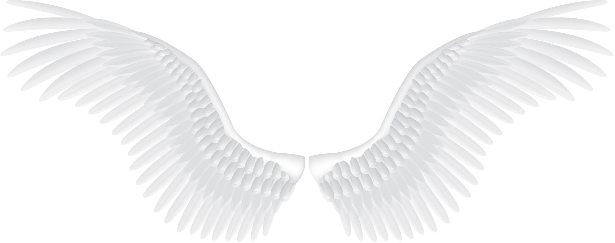 White Wings Png Image Wings Png White Wings Wings
