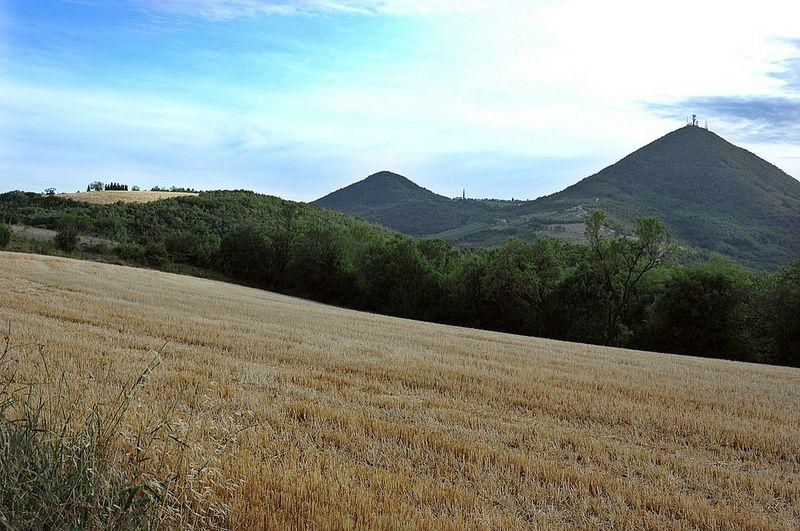 Giugno sul Sassonegro   Flickr - Photo Sharing! @Parco Regionale dei Colli Euganei - www.visitabanomontegrotto.com