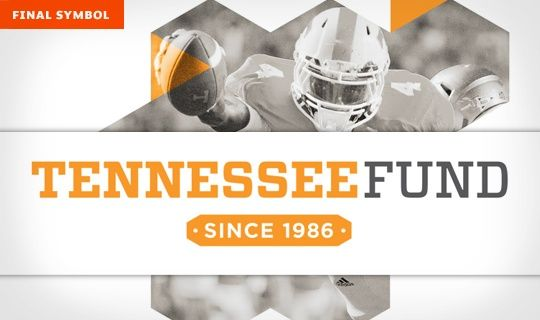 Designsensory -- Tennessee Fund Identity