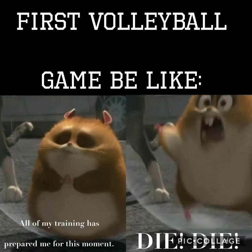 Me Empneysh Soccerhacks Sportsmemes Volleyball Humor Volleyball Jokes Volleyball Quotes