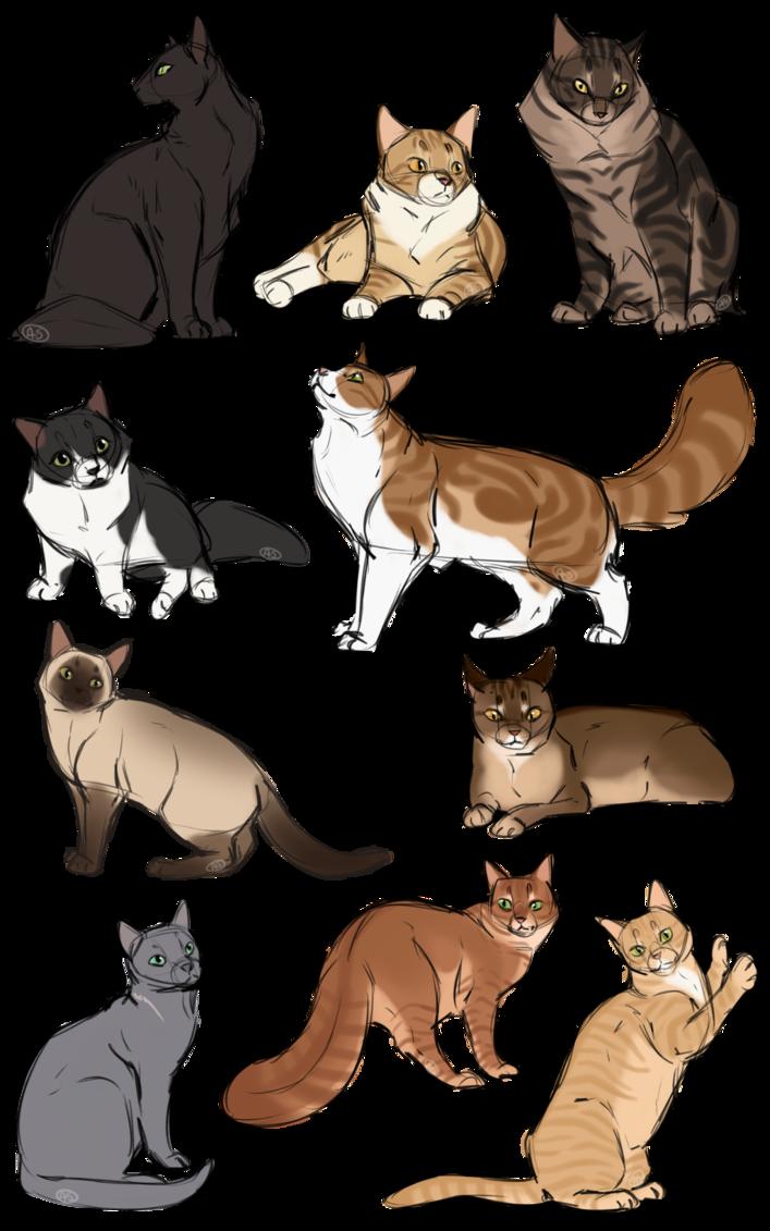 How To Cat Again By Annmy Deviantart Com On Deviantart Warrior
