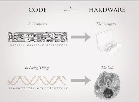 code <> hardware