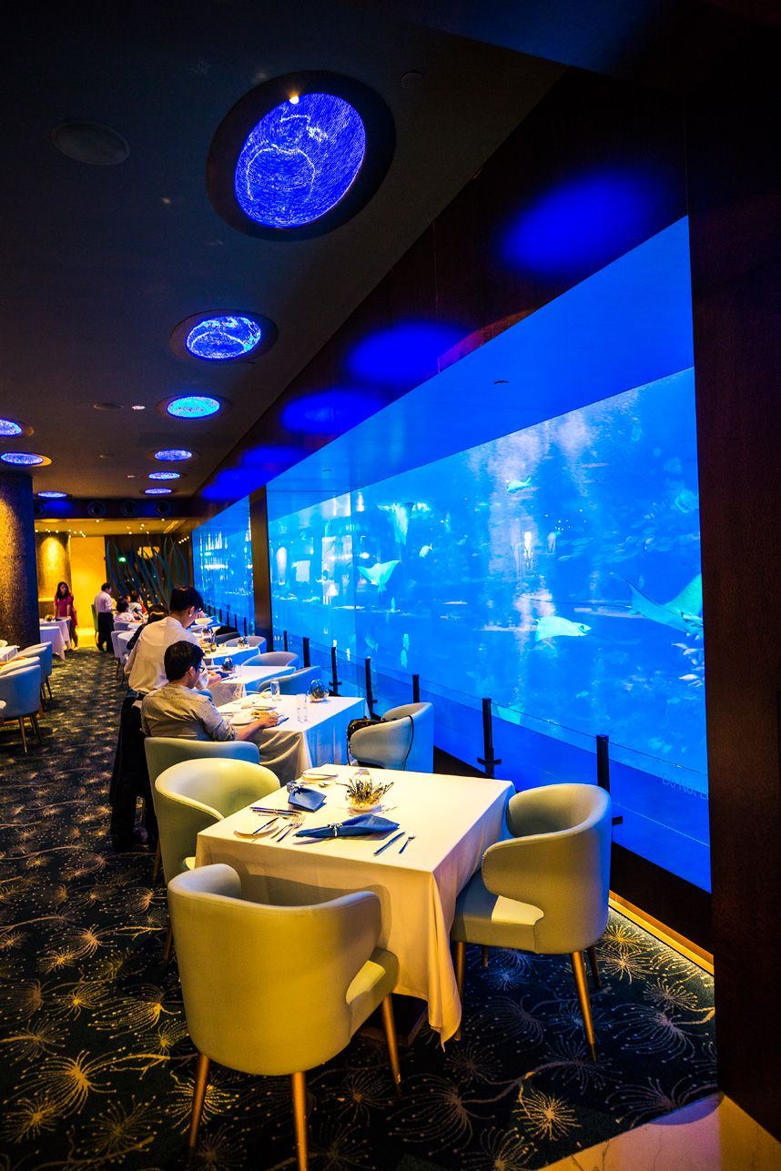 7 Things You Can T Miss At Sentosa Island Singapore S Resort Island Sentosa Island Singapore Singapore Resorts Underwater Restaurant