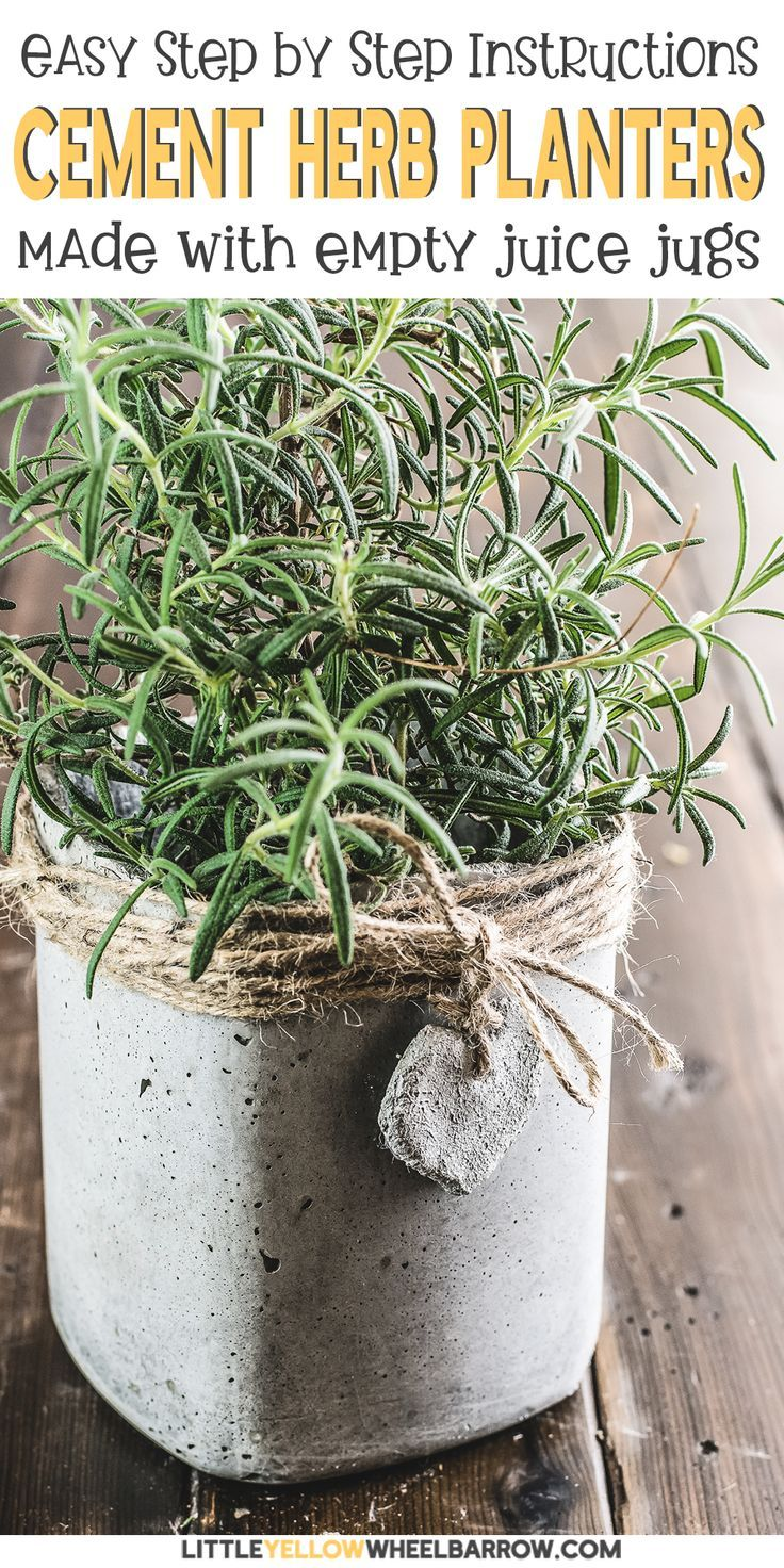 Make Your Own Diy Concrete Planters On The Cheap Diy Concrete Planters Cement Planters Herb Planters