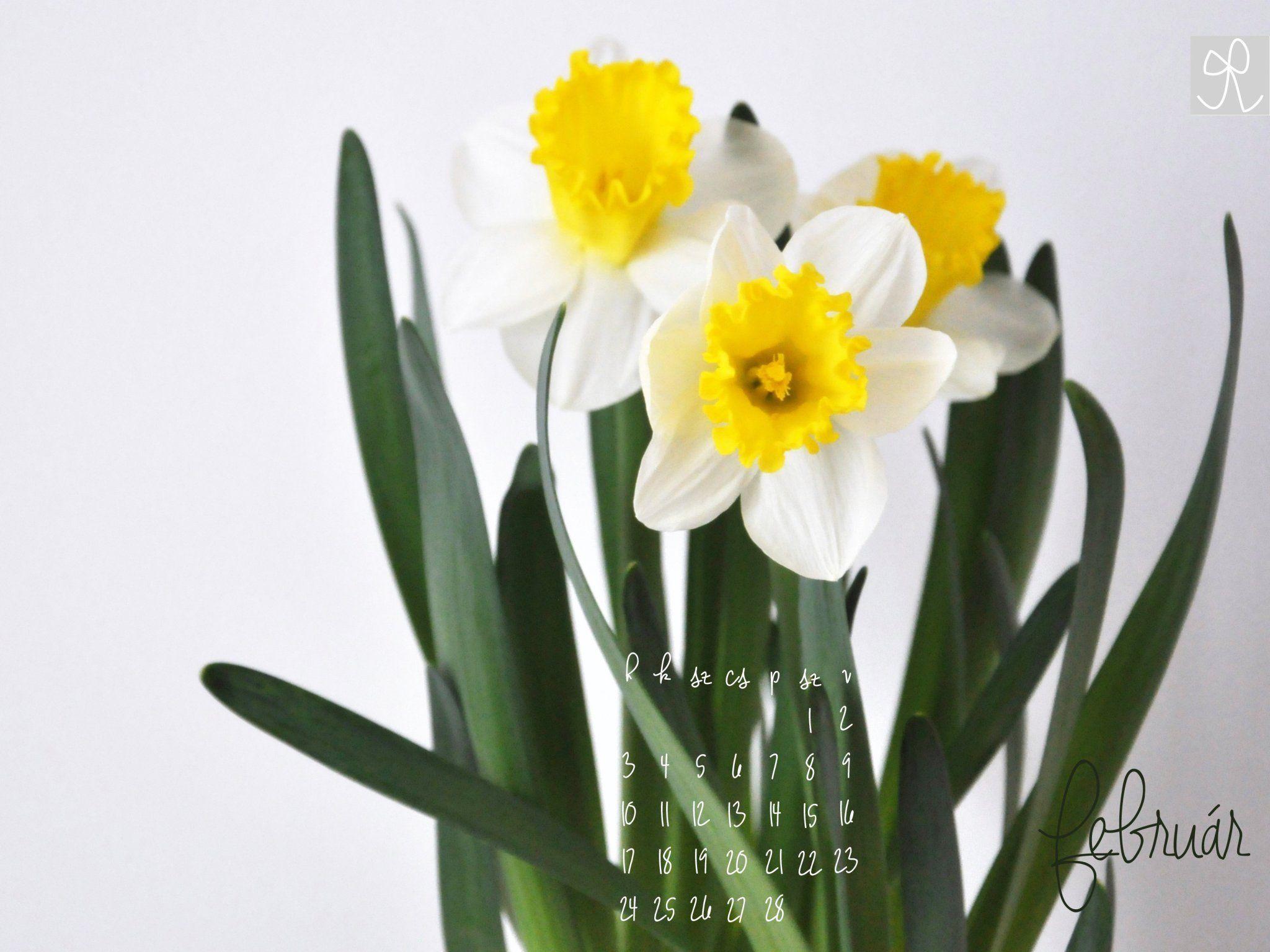 júniusi háttérképek naptár Februári háttérképeink | Pics & Backgrounds | Pinterest júniusi háttérképek naptár