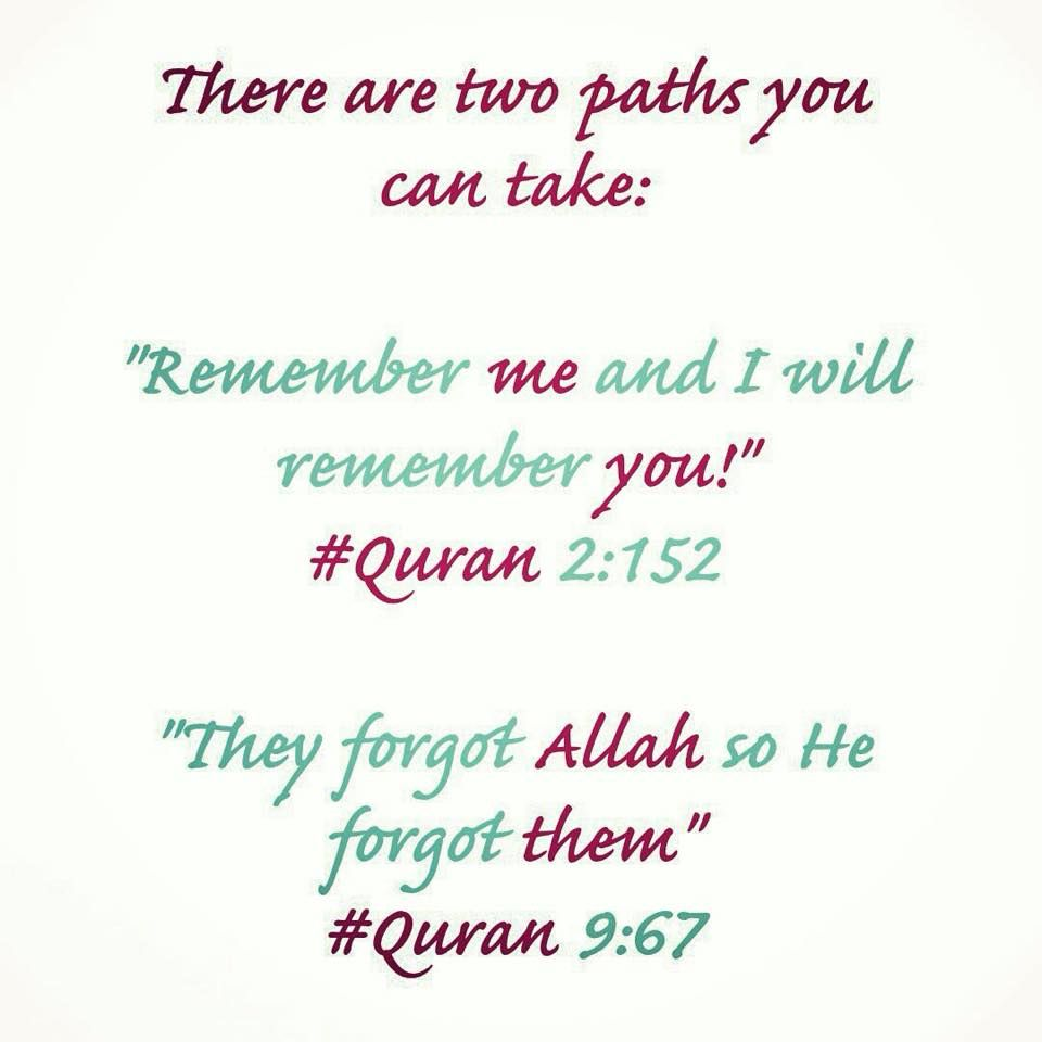 More Islamic Quotes HERE Quran Wisdoms Inspiration