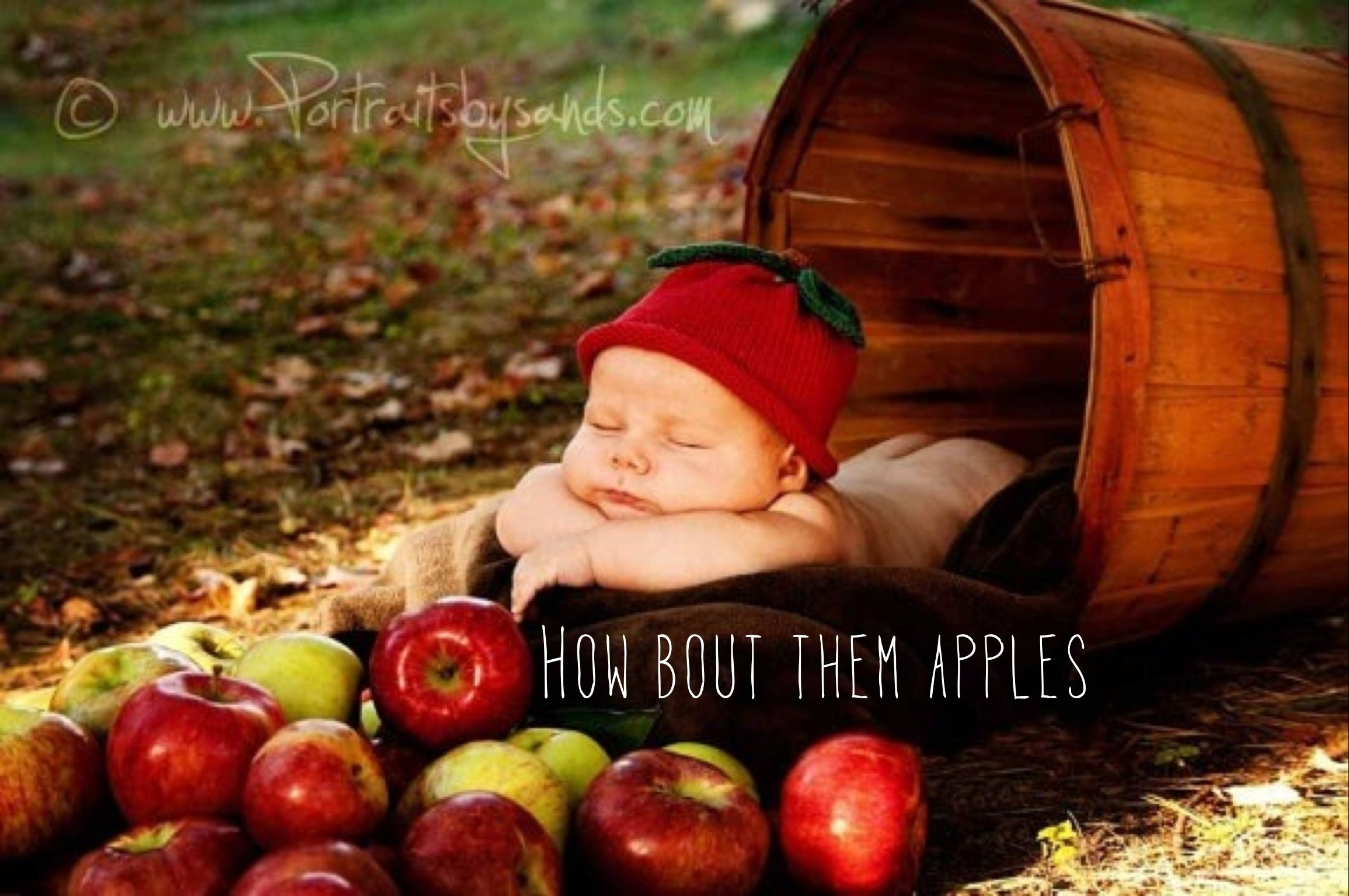 Babys apples fall into thanksgiving baby photos cute baby