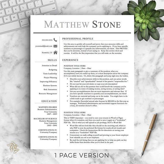 Professional Resume Template for Word  Pages One, Two and Three
