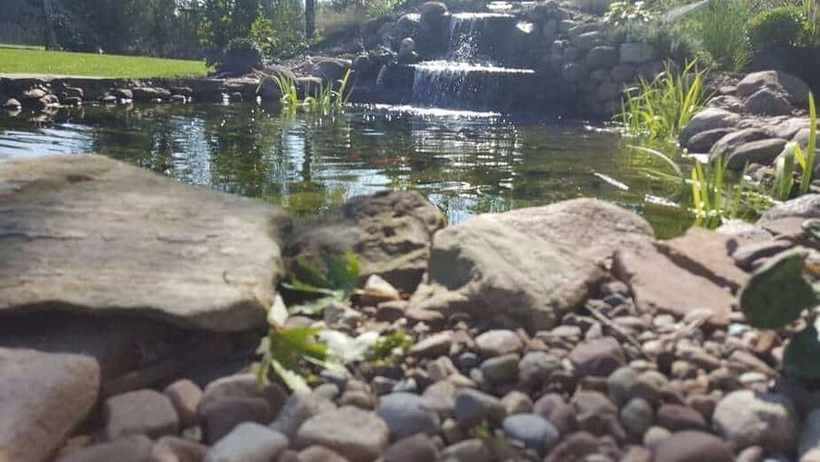 How To Build A Pond Ponds Backyard Water Garden Japanese Rock