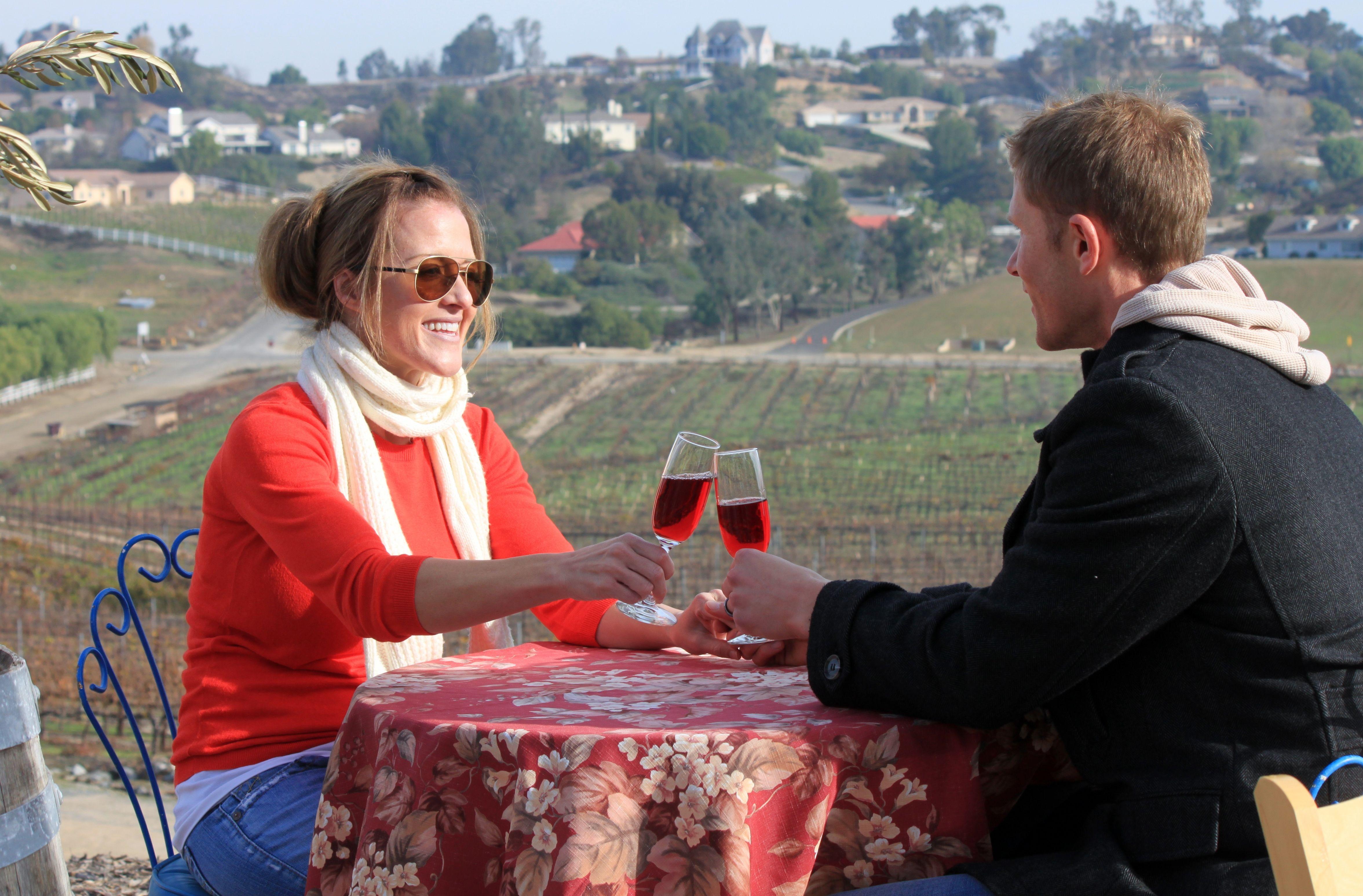 Vindemia Vineyard Winery Hot Air Balloon Ride Package Hot Air Balloon Rides Balloon Rides Wine Discount