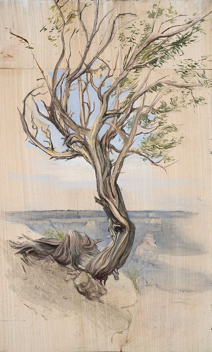 What Makes a Landscape Painting Really Good? A Diva Tree