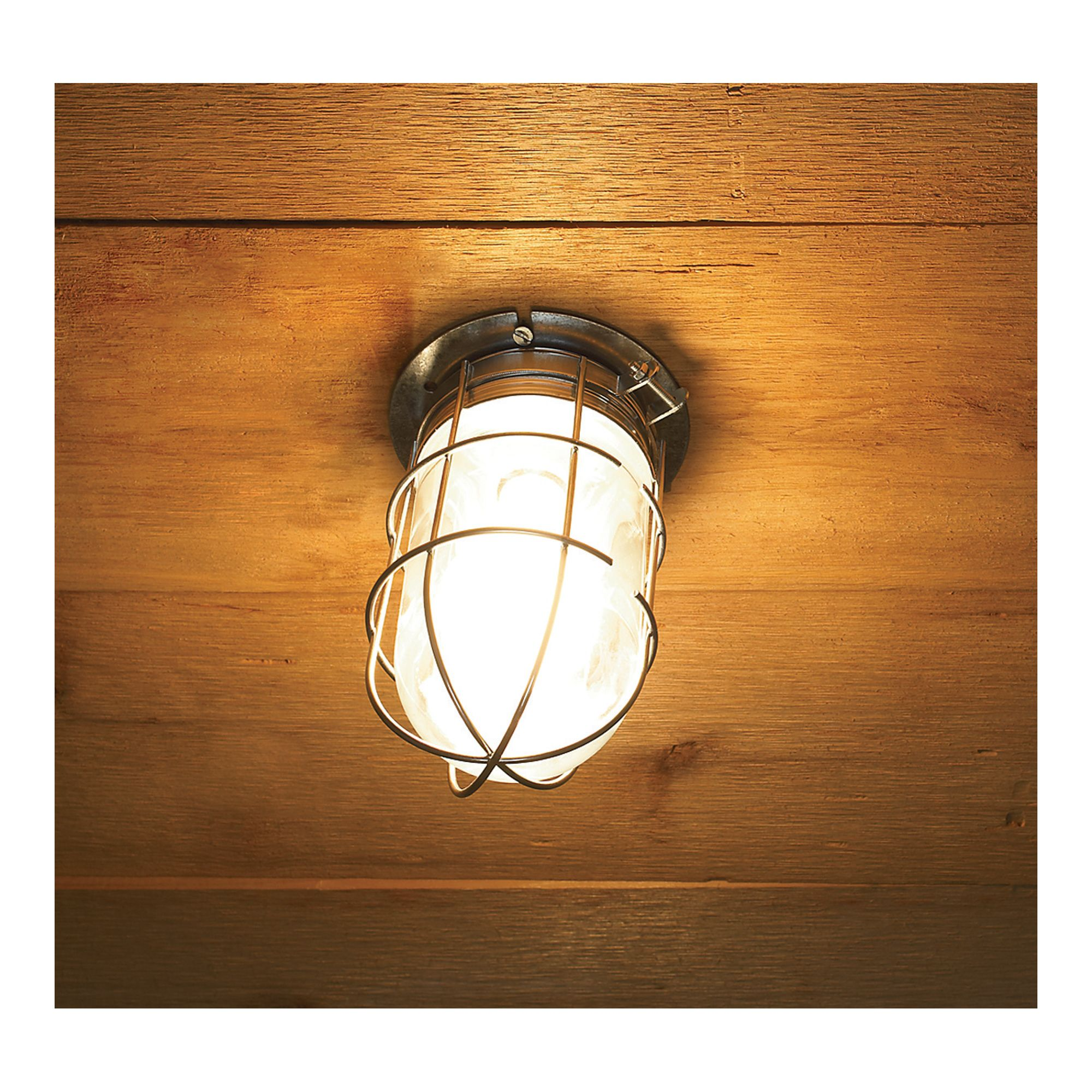 Canarm Ceiling/Wall Barn Light with Cage 120V, 100 Watts ...