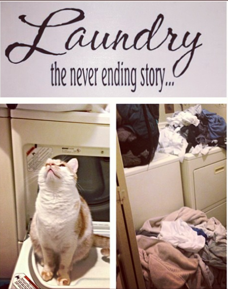 I think my cat's trying to tell me something.:D I'll get to it. #laundry #sign #cat #reminder #I hate laundry #housework #procrastination #chores #help