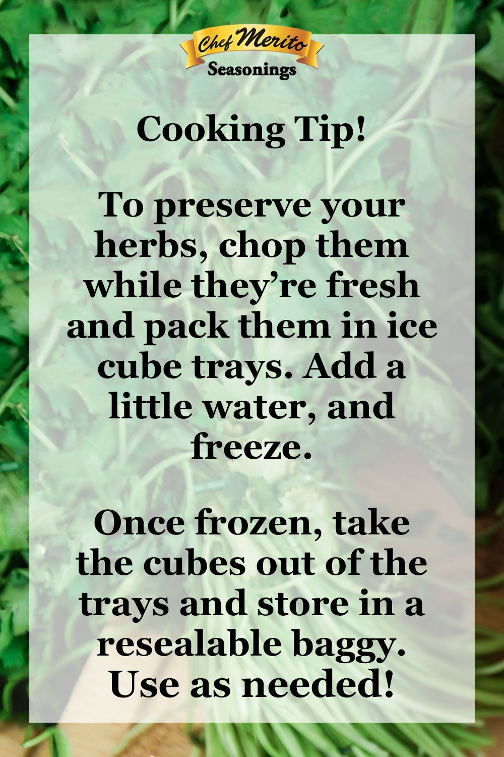 Photo of Cooking Hack- Prolong the life of your Herbs!