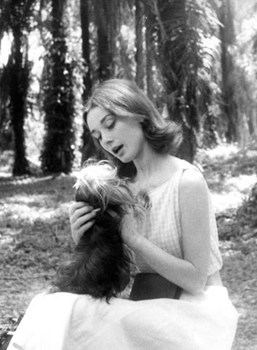 Audrey Hepburn with Mr Famous photographed by Leo Fuchs during the filming of The Nun's Story, 1958.