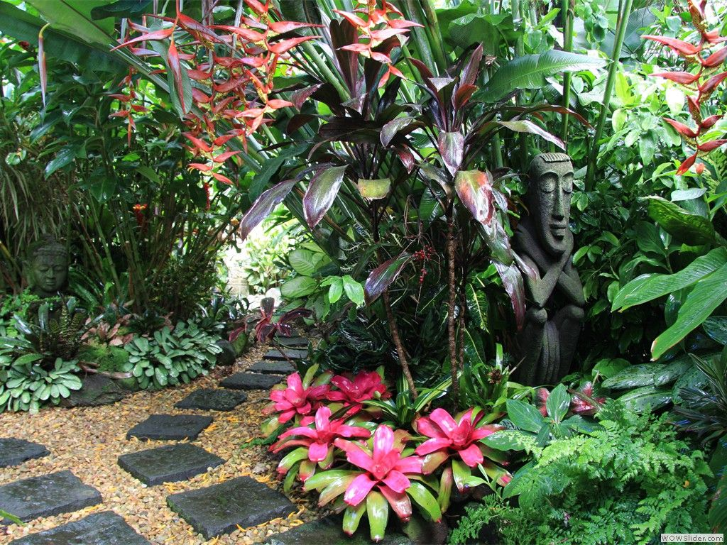 Look at those lipstick bromeliads (if that\'s what they are called ...