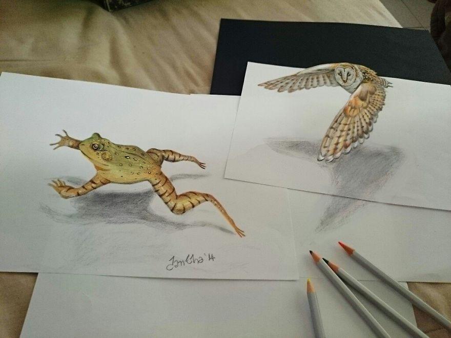объемные рисунки животных что написали ниже