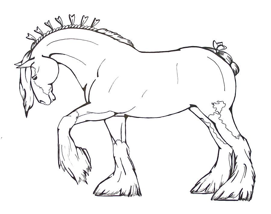 Printable Coloring Pages Clydesdale Horses