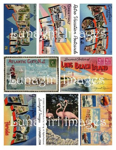 digital download vintage vacation postcards images 1950s pink flamingos collage sheet