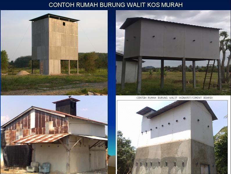 44+ Contoh Gambar Rumah Walet Terbaru