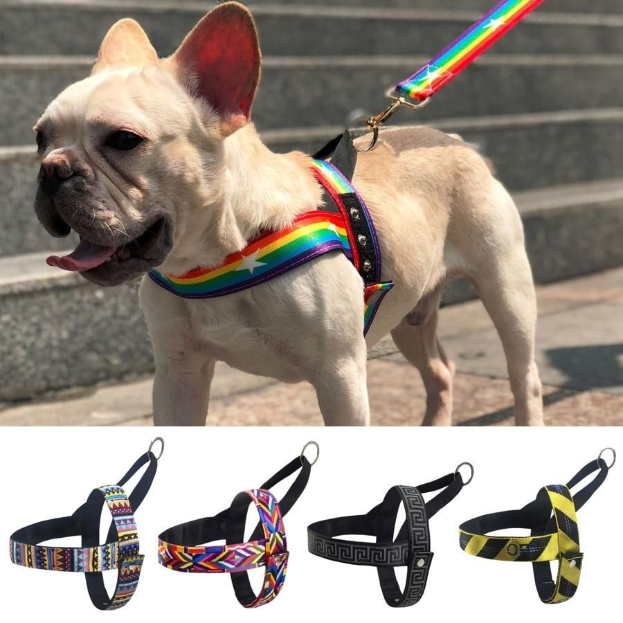 Pin By Bill Babcock On Arts Crafts In 2020 Dog Harness Medium