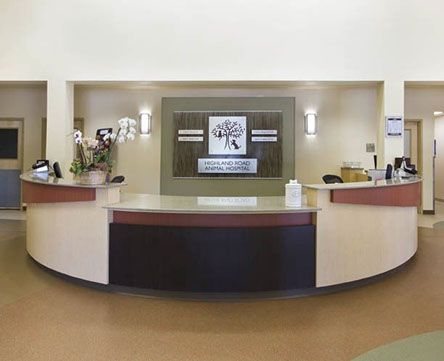 Hrah Reception Desk Animal Hospital Veterinarian Home Decor