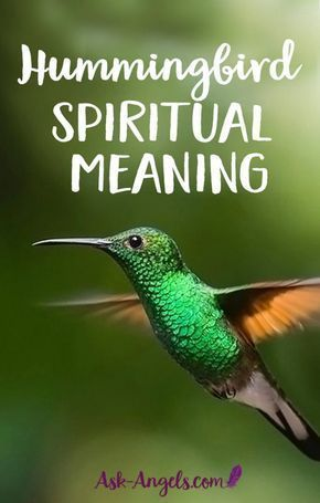 what does the hummingbird symbolize