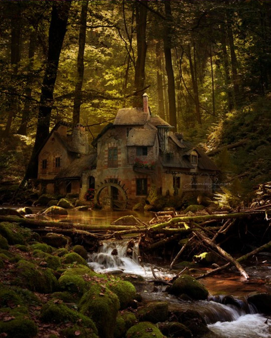An Old Mill, Black Forest, Germany.