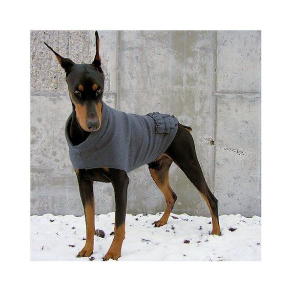 Ruffle Rump Doberman Sweater Making One Of These This Weekend
