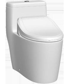Bellagio Bidet Toilet Little Bathroom Toilet Jacuzzi Bath