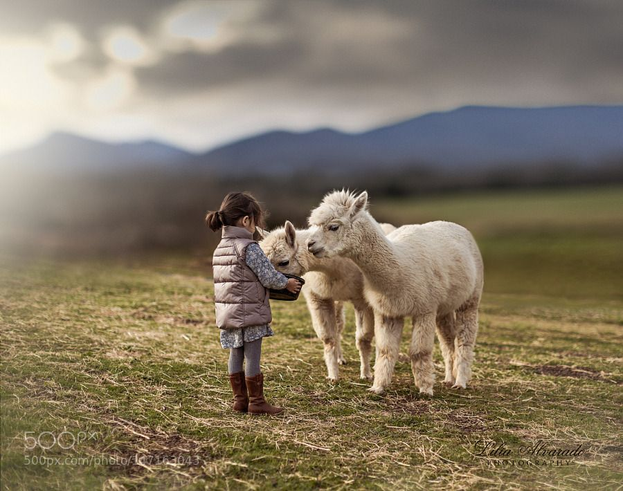 Nurturing… by LiliaAlvarado Cute animals, Cute pictures