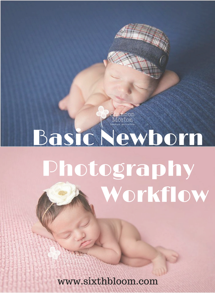 Beginners guide to newborn photography workflow tips