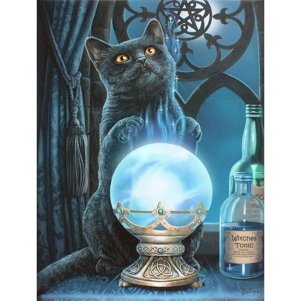 Witches Apprentice Cat Canvas Print by Lisa Parker   Cat ...