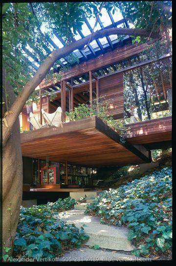 architecture  maison sur pilotis, dans les arbres Architecture - Maison En Bois Sur Pilotis