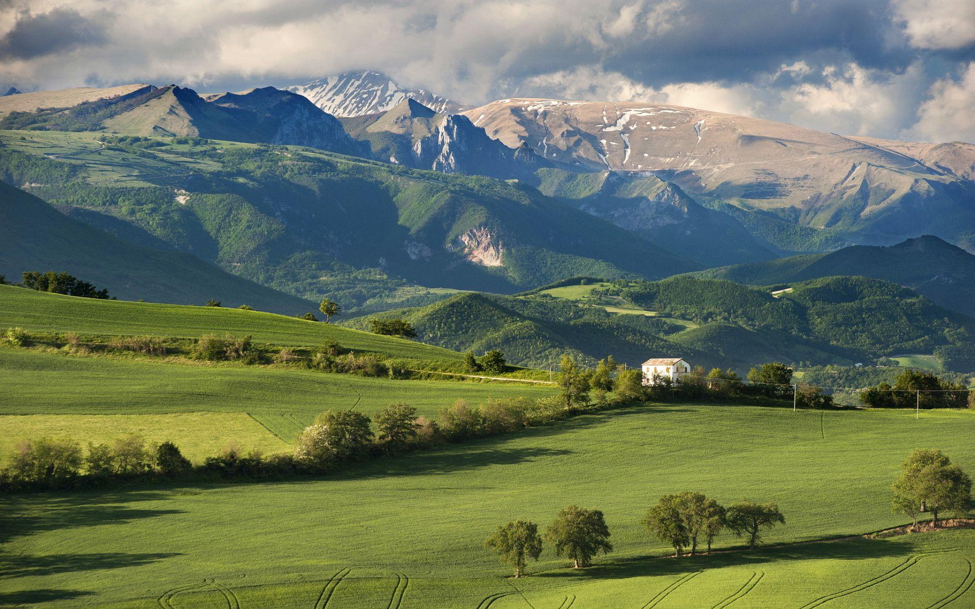 italian landscape with ox - photo #30