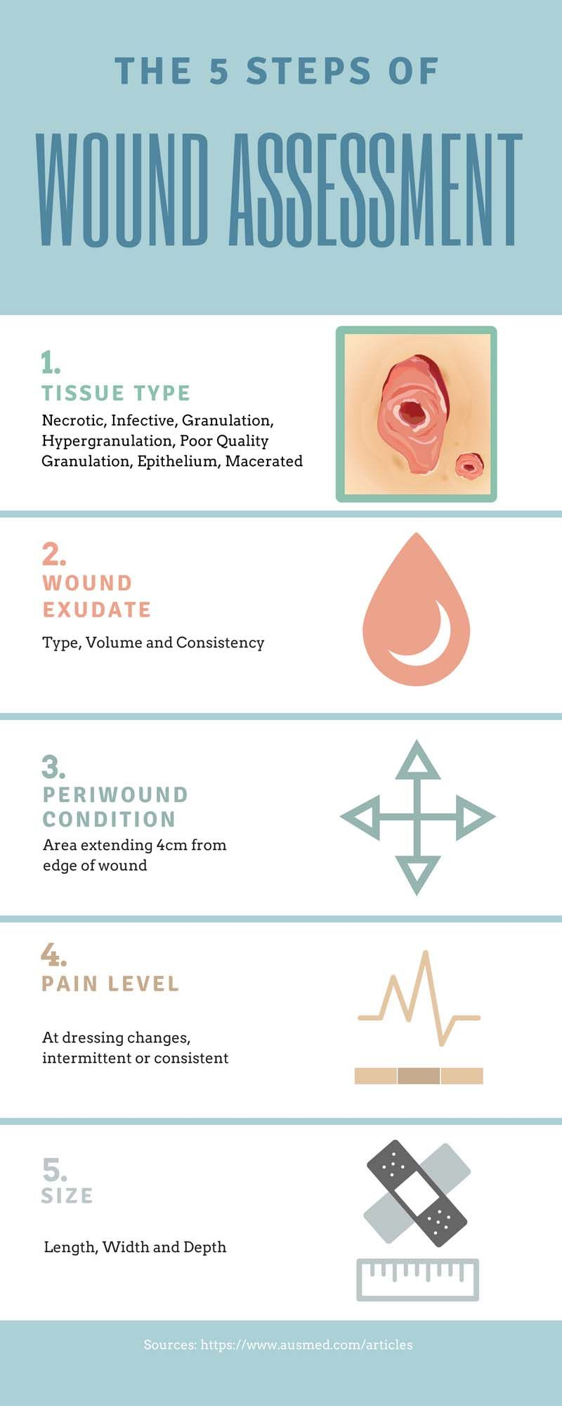 Ausmed's Wound Care and Wound Healing Guide for Nurses Infographic Wound  Assessment