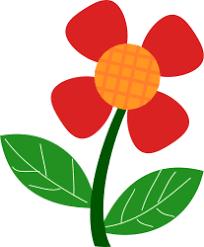 Imagenes De Flores Sin Fondo