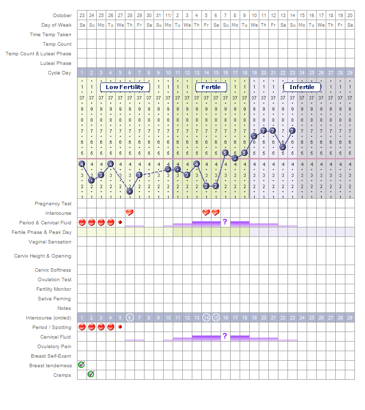 It's just a photo of Punchy Printable Fertility Chart